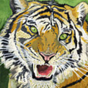 Hungry Tiger Poster