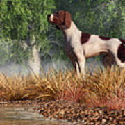 Hunting Dog By A River Poster