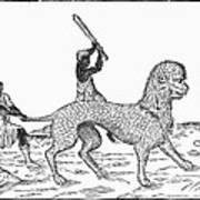Huspalin, 16th Century Poster