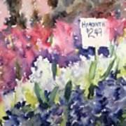 Hyacinths Poster