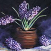 Hyacinths In A Pot Poster