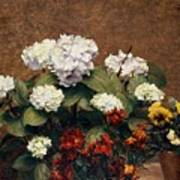 Hydrangeas And Wallflowers And Two Pots Of Pansies Poster