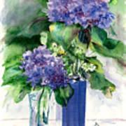 Hydrangeas In Vases Poster