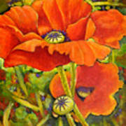 I Love Poppies Poster