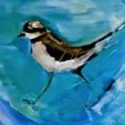 I See You Said The Killdeer As She Passed By Poster