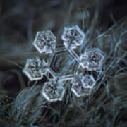 Icy Jewel Poster by Alexey Kljatov