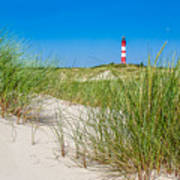 Idyllic Dunes And Lighthouse At North Sea Poster