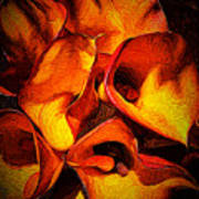 If Van Gogh Painted Calla Lilies Poster