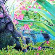 Iguana Poster