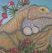 Iguana Iguana Poster