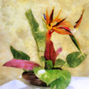 Ikebana Bird Of Paradise Poster