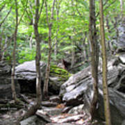Image Included In Queen The Novel - Rocks At Smugglers Notch Poster