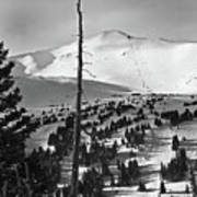 Imperial Bowl And Peak 8 At Breckenridge Resort Colorado Poster by Brendan Reals