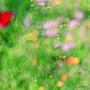 Impressionistic Blossom 5 At Britain Park Poster