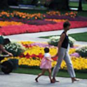 In The Garden Of Monet Poster
