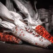 Indian Corn Still Life Poster