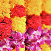 Indian Flower Garland Poster