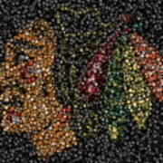 Indian Hockey Puck Mosaic Poster by Paul Van Scott