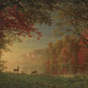 Indian Sunset Deer By A Lake Poster