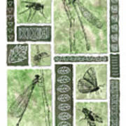 Insects Of Hawaii II Poster