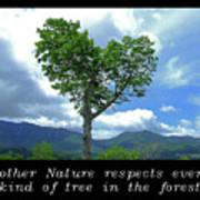 Inspirational-mother Nature Poster