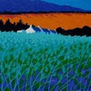 Ireland - West Cork  Poster