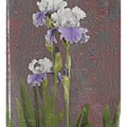 Iris 3 Poster