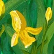 Iris Flow Poster