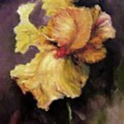 Iris Gold Poster