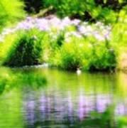Iris' Reflection Poster