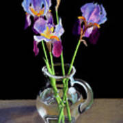 Irises In A Glass Pitcher Poster