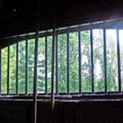 Iron Bars And Sunlight Poster