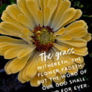 Isaiah 40.8 Poster