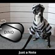 Italian Greyhound Bad Boy Poster