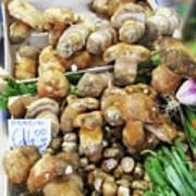 Italian Market Porcini Mushrooms  Poster