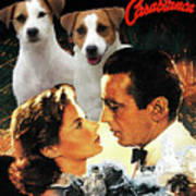 Jack Russell Terrier Art Canvas Print - Casablanca Movie Poster Poster