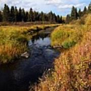 Jackfish Creek In Autumn Poster