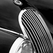Jaguar Grille Black And White Poster