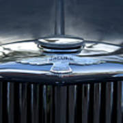 Jaguar Hood Ornament Poster