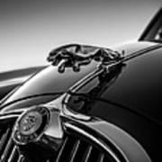 Jaguar Mascot Poster