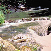 Jamaica Rushing Water Poster