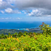 Jamaican Vista Poster