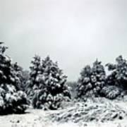 January Snow Iv Poster