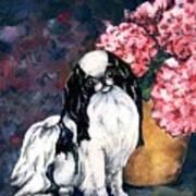 Japanese Chin And Hydrangeas Poster