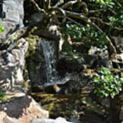 Japanese Garden And Koi Pond Poster