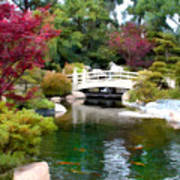 Japanese Garden Bridge And Koi Pond Poster