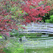 Japanese Garden Bridge In Springtime Poster