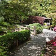 Japanese Garden Path With Azaleas Poster