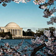 Jefferson Memorial In Spring Poster