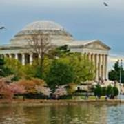 Jefferson Memorial, Springtime In Dc Is When Things Bloom, Like The Japanese Cherry Trees Poster